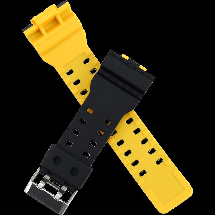 黒と黄の電気タイプコンビ